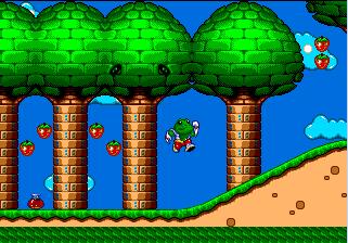 FrogDude3