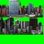 NY FOR
