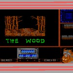 Beauty and the Beast - Commodore 64 - Level 2 - The Wood - Loading